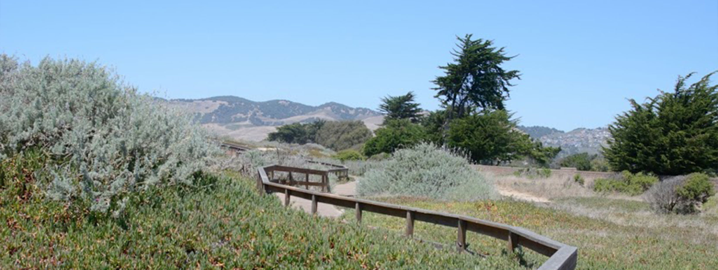 Photo of a hiking trail in San Luis Obispo.